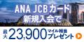【高P】ANA JCBカード(ソラチカカード)