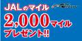 九電みらいエナジー【JALマイルプラン】